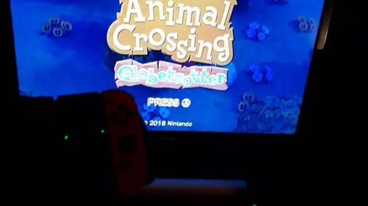 ainmal-crossing-switch.jpg
