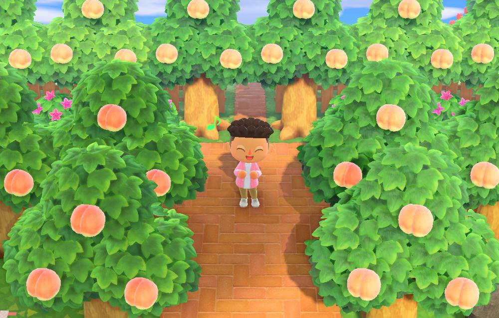 Come spostare gli alberi interi e le rocce su Animal Crossing: New Horizons