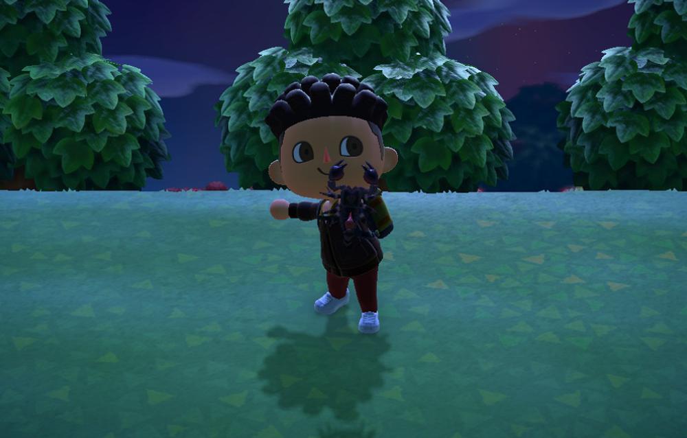 Come accedere all'isola delle tarantole o degli scorpioni in Animal Crossing: New Horizons