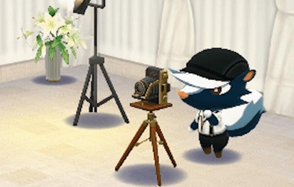 Animal Crossing: Pocket Camp, è tornato Sciuscià!