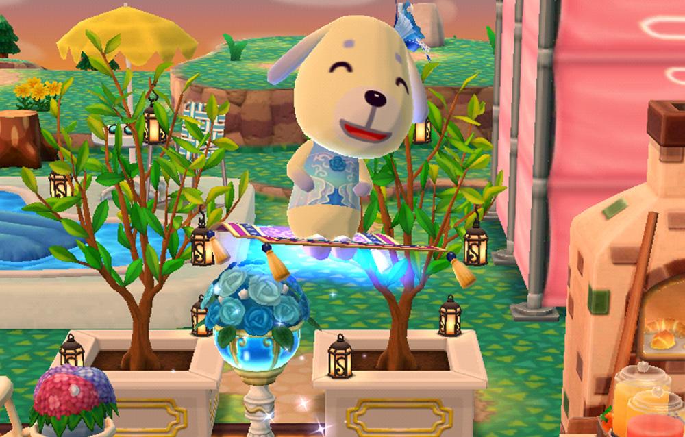 Ecco i bonus del giorno previsti in Animal Crossing: Pocket Camp dall'11/06 al 18/06!