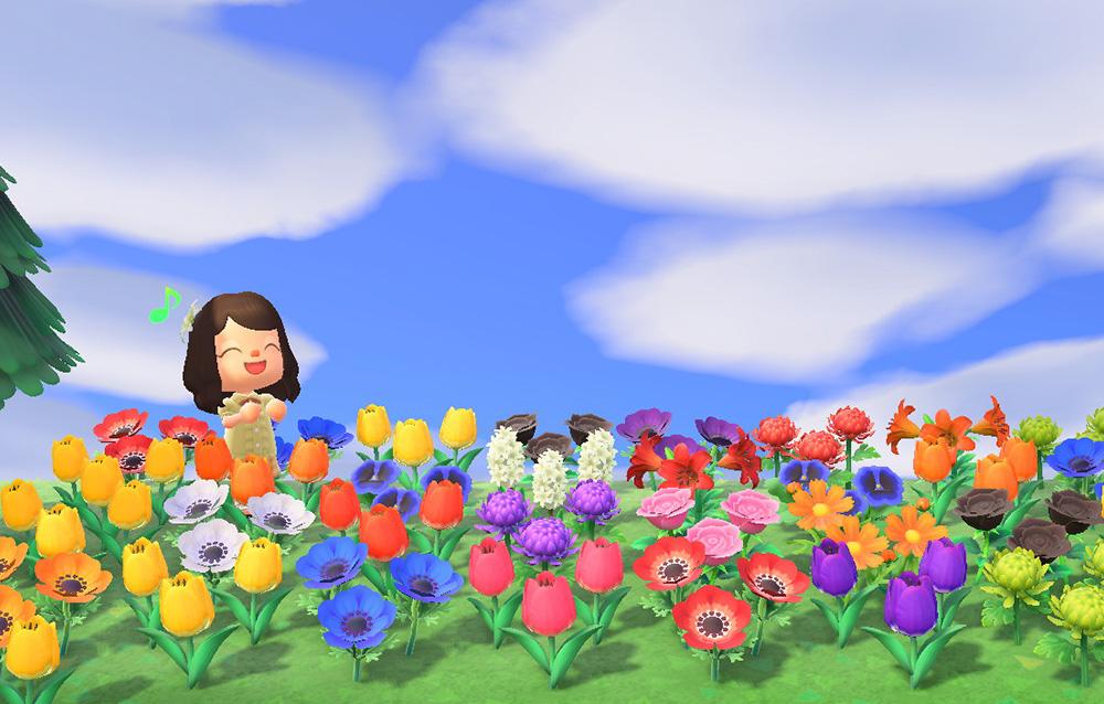 Come creare gli ibridi dei fiori in Animal Crossing: New Horizons