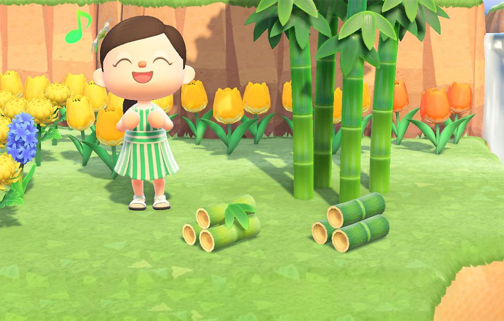 Stagione del bambù giovane primavera