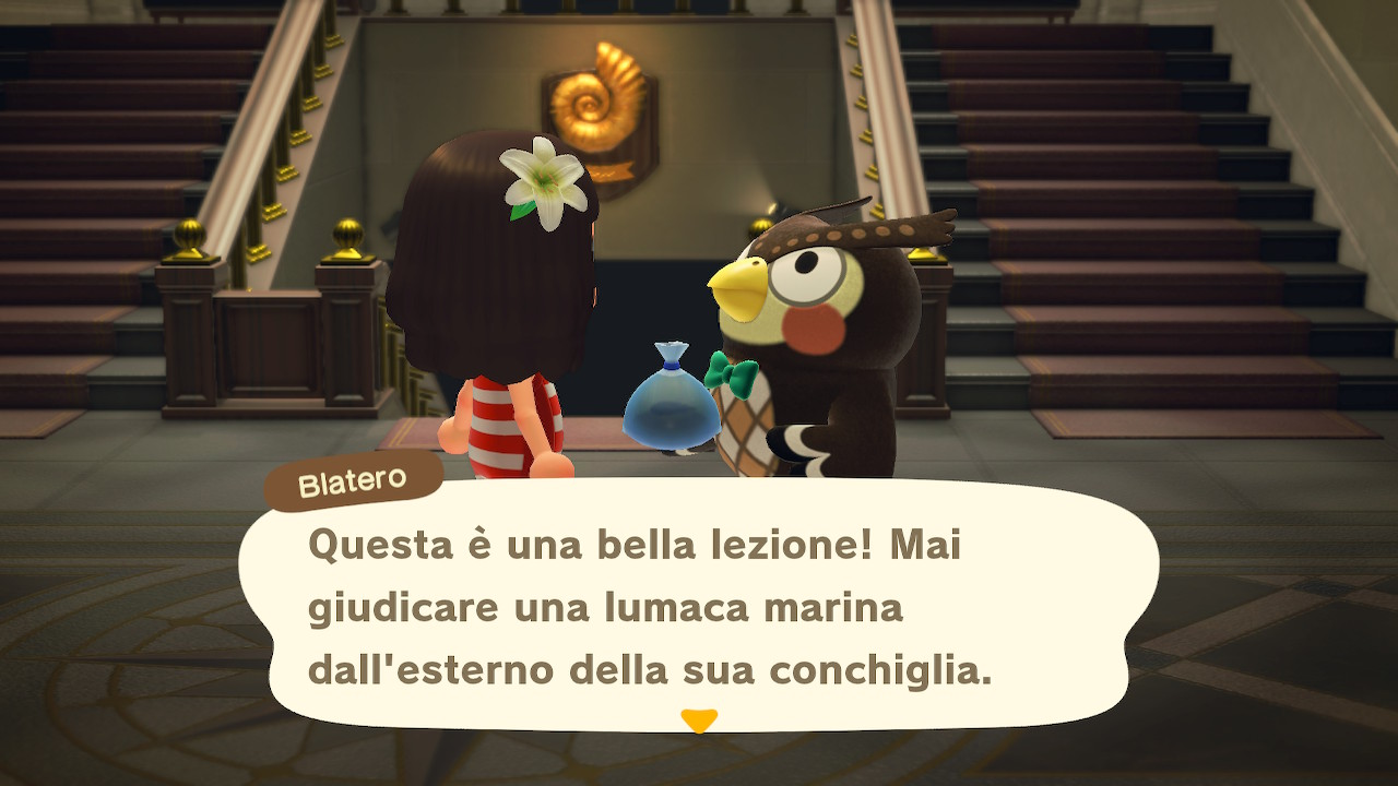 Il dialogo con il curatore del museo 5