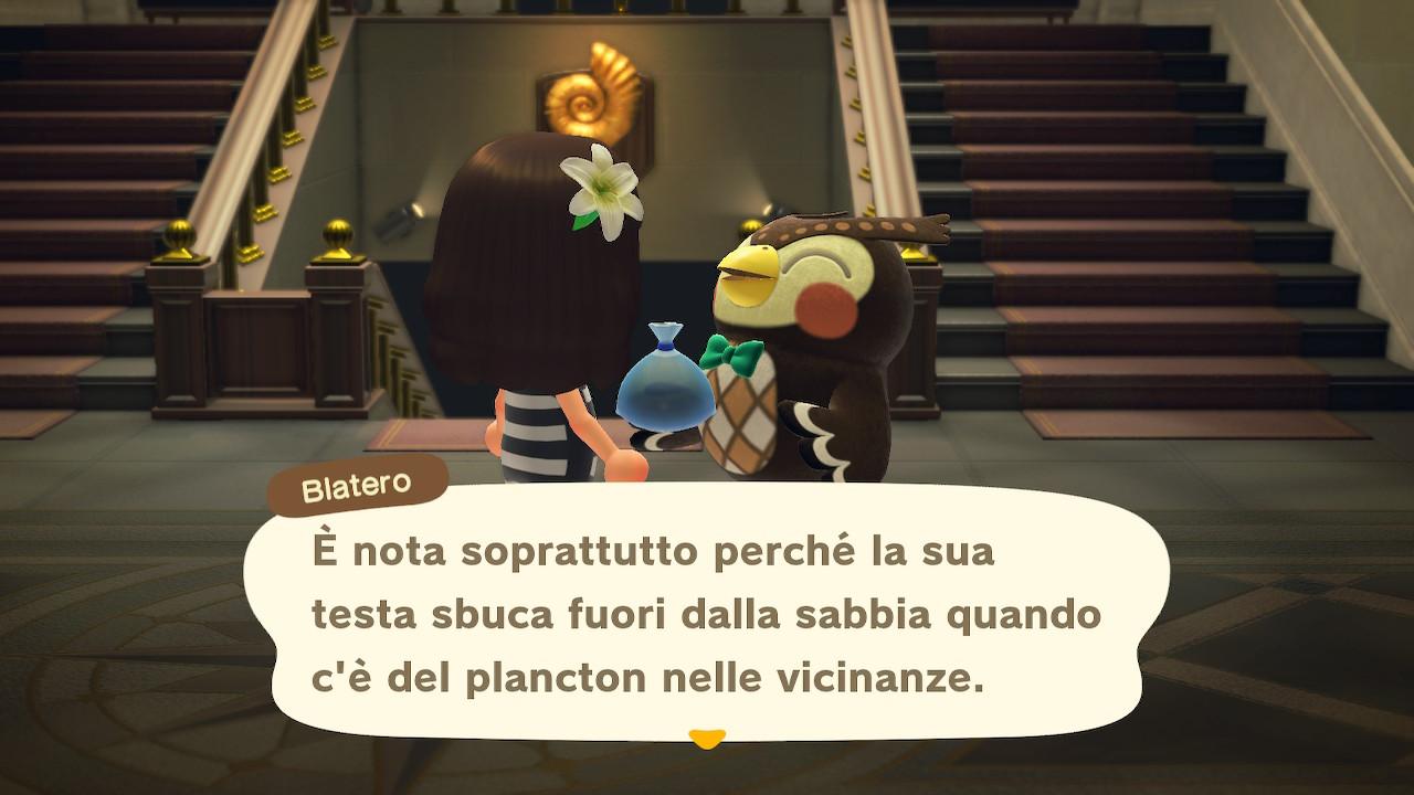 Il dialogo con il curatore del museo 2