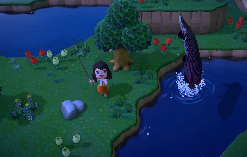 Tutta la fauna presente nel mese di giugno in Animal Crossing: New Horizons