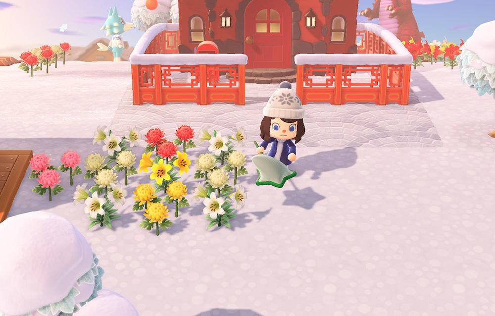 Tutta la fauna presente nel mese di dicembre in Animal Crossing: New Horizons