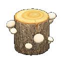 Ciocco fungo (Fungo bianco)