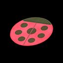 Tappeto coccinella