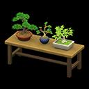 Tavolo con bonsai