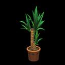 Yucca (Marrone)