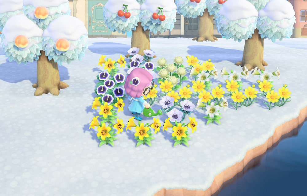 Tutta la fauna presente nel mese di febbraio in Animal Crossing: New Horizons
