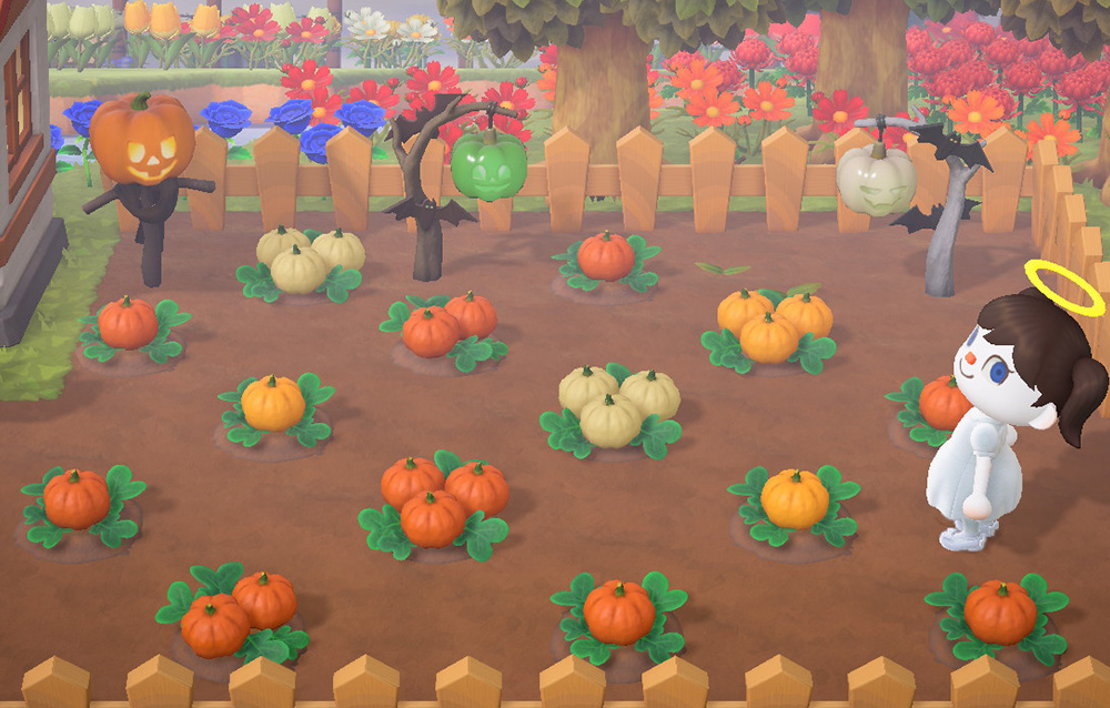Come coltivare le zucche in Animal Crossing: New Horizons