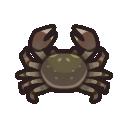 Granchio guantato