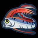 Pesce remo