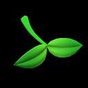 Foglia (Verde)