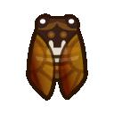Cicala marrone