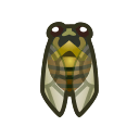 Cicala sputacchina