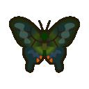 Farfalla vanessa io