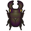 Coleottero gigante