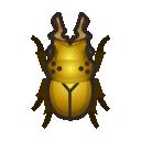 Coleottero dorato