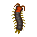 Centopiedi