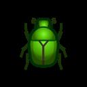 Cetonia dorata