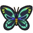Farfalla regina Alessandra