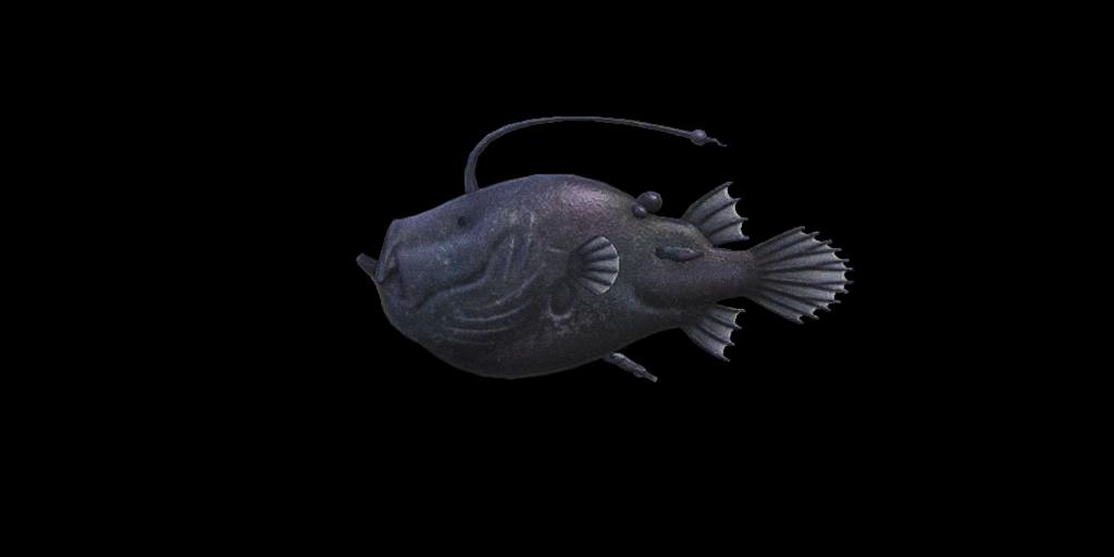 Pesce abissale