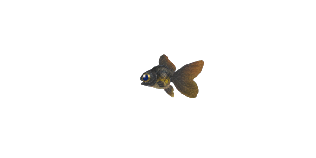 Pesce telescopio