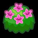 Azalea rosa adulta
