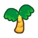 Palma da cocco adulta