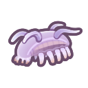 Porcellino di mare