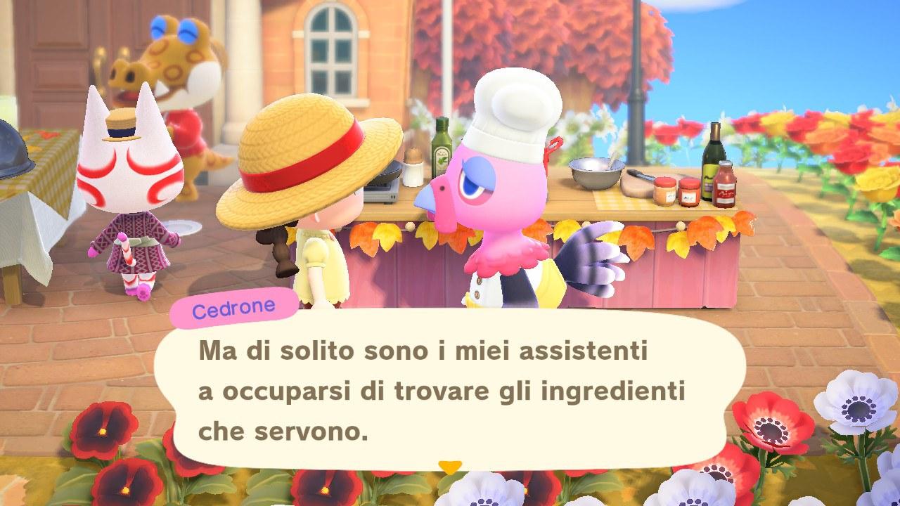 Conosciamo la stella della cucina! 11