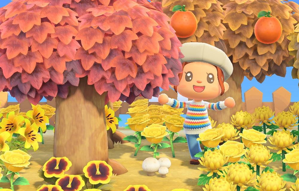 Ecco cosa ci aspettiamo per il prossimo aggiornamento di Animal Crossing: New Horizons previsto entro la fine di novembre!
