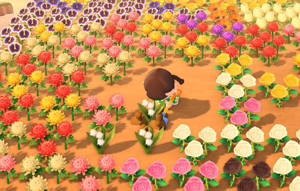 Tutti gli strumenti presenti in Animal Crossing: New Horizons e come utilizzarli