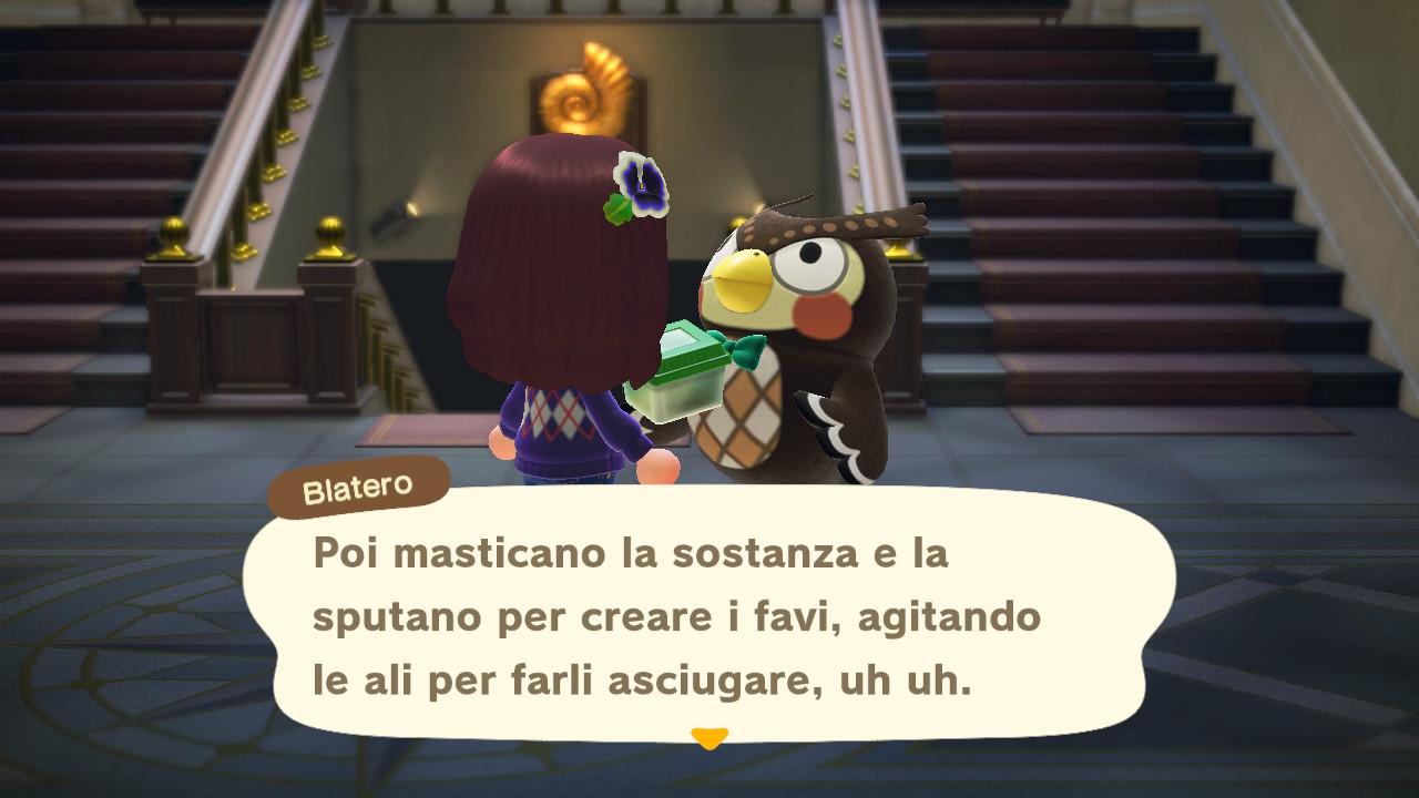 Il dialogo con il curatore del museo 3