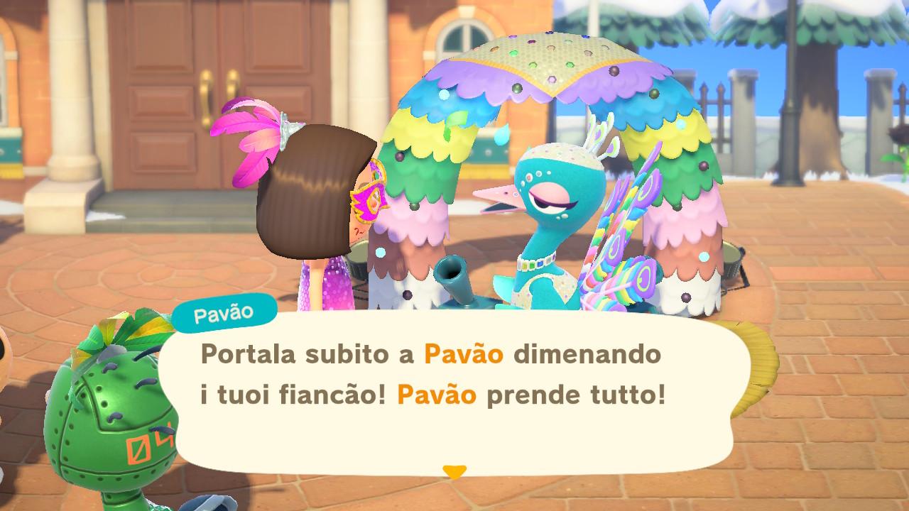 Facciamo conoscenza di Pavão! 16