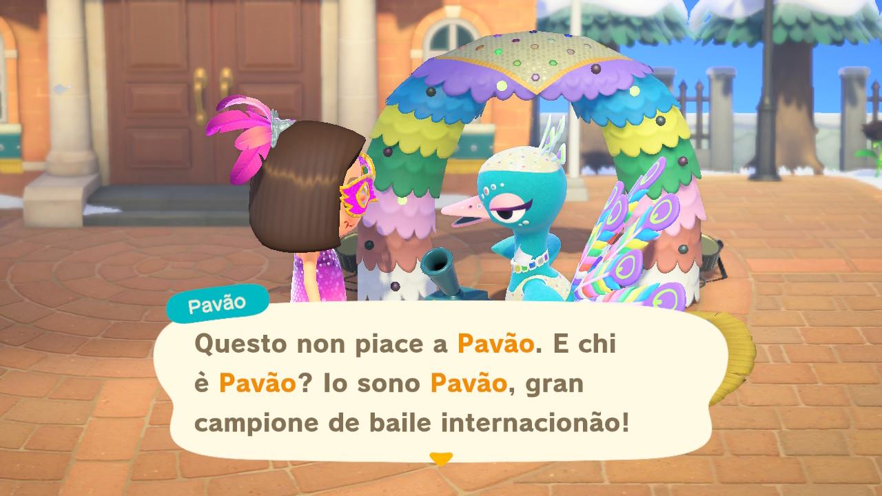 Facciamo conoscenza di Pavão! 4