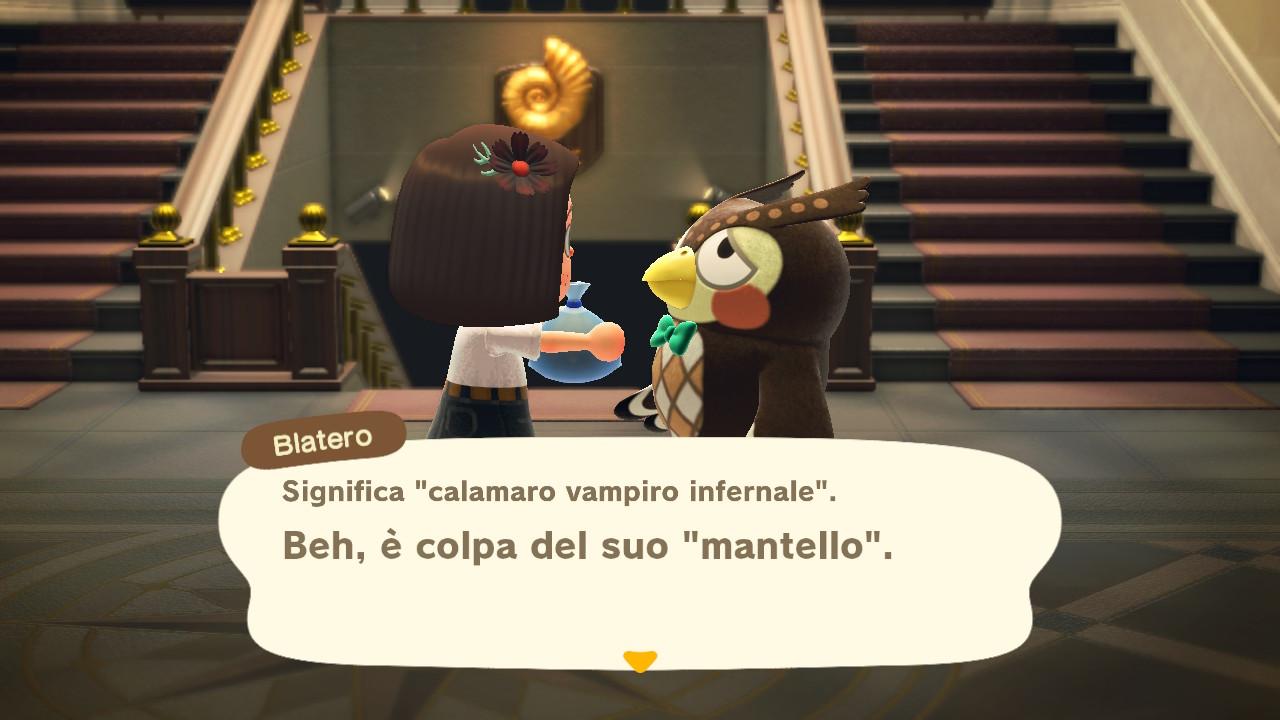 Il dialogo con il curatore del museo 6