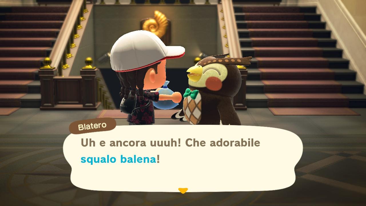 Il dialogo con il curatore del museo 1