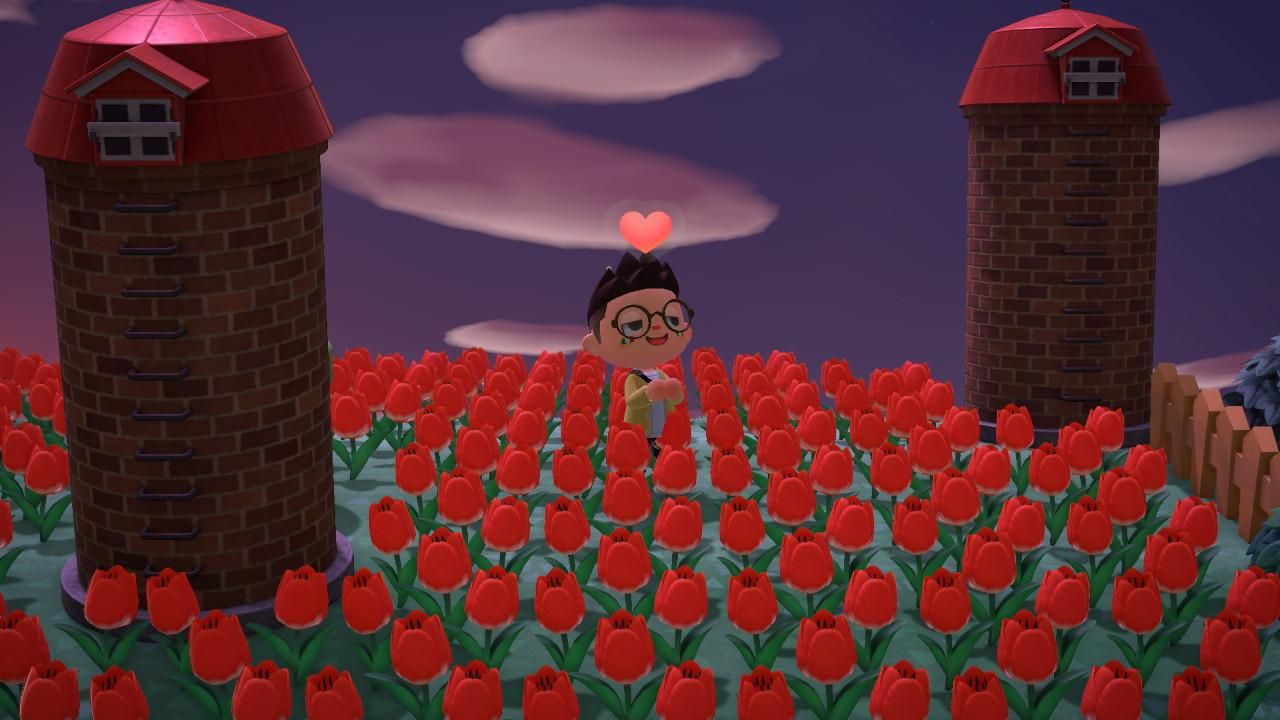 Il campo di tulipani