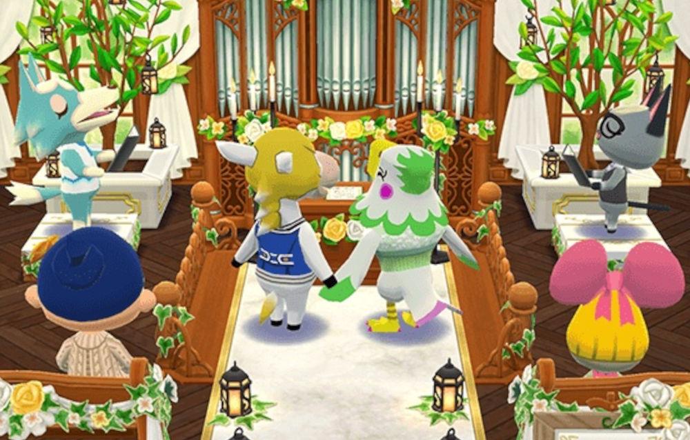 Animal Crossing: Pocket Camp, il biscotto cerimonia di Celia è di nuovo disponibile!