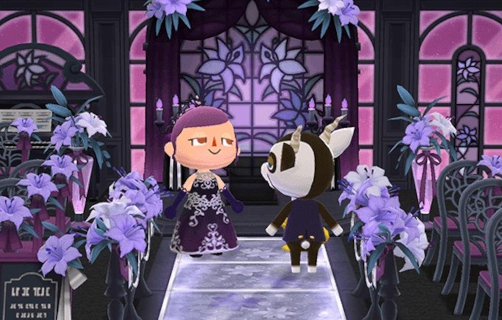 Animal Crossing: Pocket Camp, il biscotto photoshoot notturno è di nuovo disponibile!